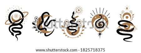 Magic snake with moon,star and crescents. Mystical symbols in a trendy minimalist style on a light background. Cosmic minimalistic scene with snake, branch, celestial bodies. Boho style print