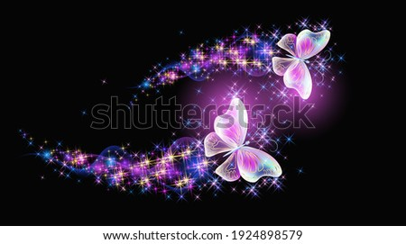 magic two butterflies with