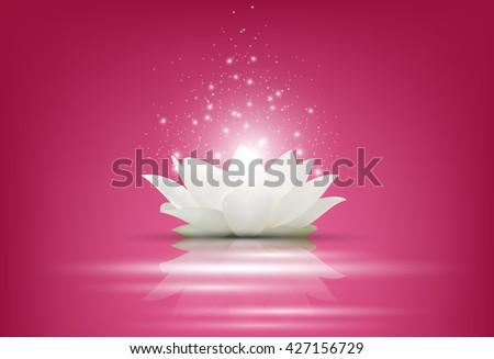 magic white lotus flower on