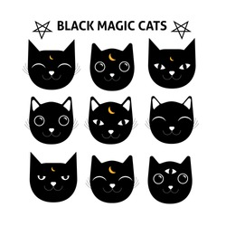 Magical black cats set. Mystery cats illustration. Emotion face.