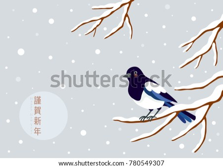 magpie perching on a winter