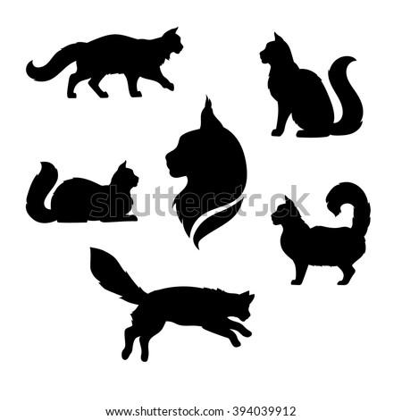 maine coon cat icons and