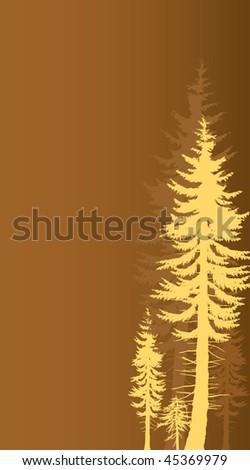 majestic cedar, temperate rain-forest design