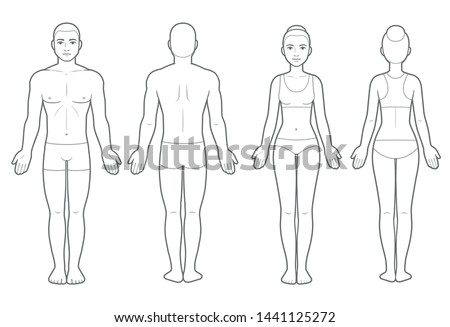 Male body types: Ectomorph, Mesomorph… Stock Photo 368923769