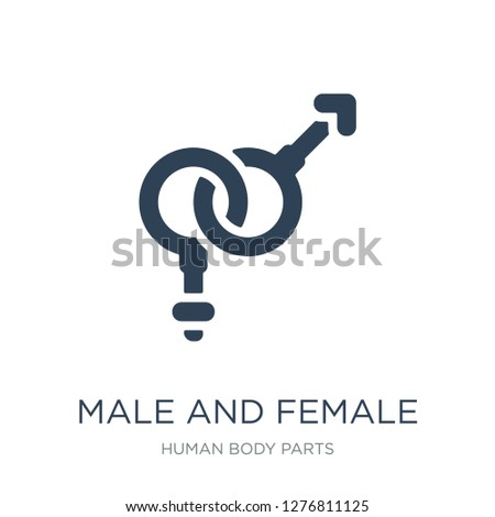 male and female gender icon vector on white background, male and female gender trendy filled icons from Human body parts collection, male and female gender vector illustration
