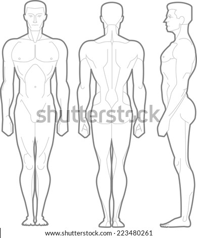 Male Body Standing Anatomical Figure vector illustration cartoon