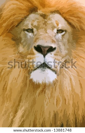 male lion vector drawing (not autotraced)