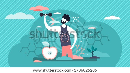 Male metabolism vector illustration. Food to energy process.  Flat tiny person concept. Nutrition chemical reactions in organism synthesis. Abstract man digestive tract and biochemistry food process.