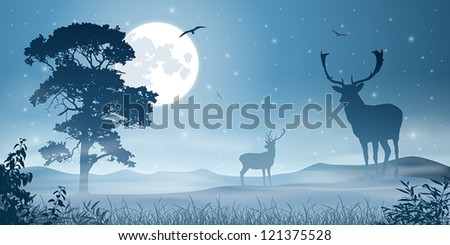 Male Stag Deer on a Misty Meadow with Night Sky and Moon