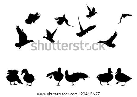 mallard duck silhouettes collection