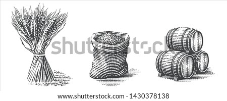 Malt in burlap bag, sheaf of wheat and wood barrels. Hand drawn engraving style illustrations.