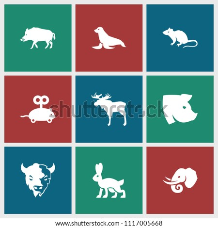 mammal icon. collection of 9...