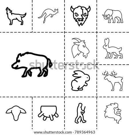 mammal icons. set of 13...