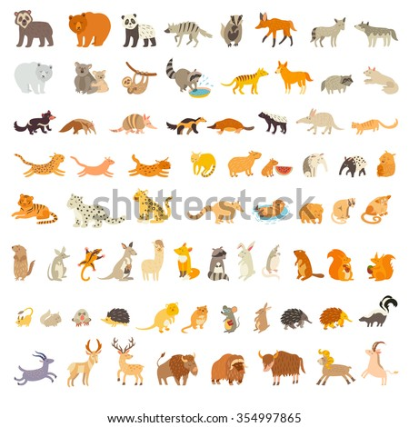 mammals of the world animals