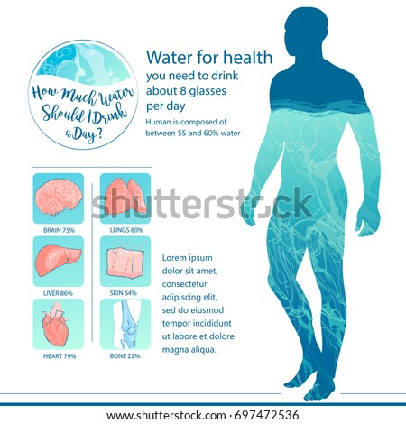 Man drinking water. Human body and internal organs balance of water. Healthy lifestyle concept, info graphic. Hand-drawn vector isolated illustration.