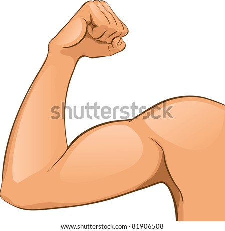Man's Arm muscles. Vector Illustration
