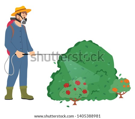 Man wearing special protective uniform vector, male with respirator and sprayer, farmer spraying roses bushes in garden with toxic liquid, pesticides ストックフォト ©