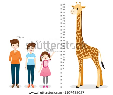 Man, Woman, Girl Measuring Height With Giraffe, Tall, Healthy, Care, People, Lifestyle