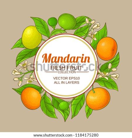 mandarin vector frame #1184175280