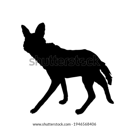 maned wolf vector silhouette
