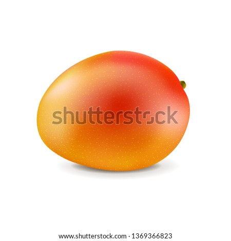 Mango Isolated White Background With Gradient Mesh, Vector Illustration