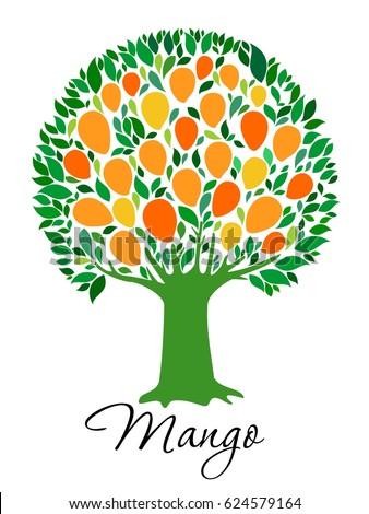 Mango Tree Isolated On White Background