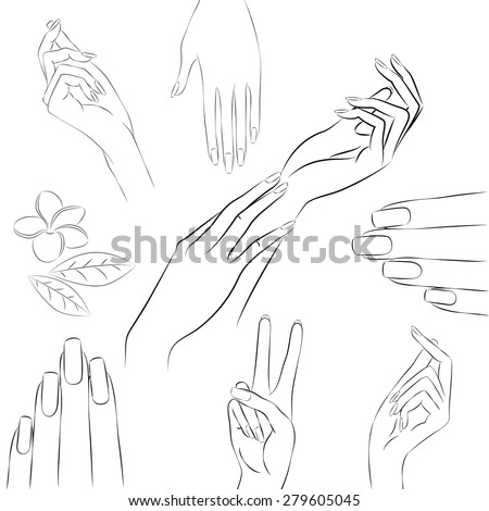 Manicure Hands Vector Collection Of Hand Drawn Elegant Woman In Various Gestures And Frangipani