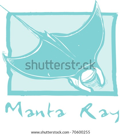 Manta ray swims in the ocean in a woodcut style image.