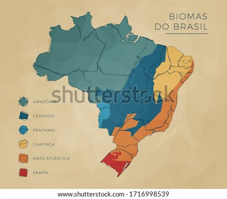 Map of Biomes of Brazil in colors. Modern and clean style sketch. Foto stock ©