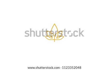 maple cannabis logo icon vector