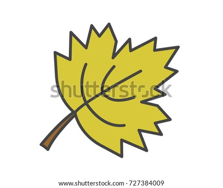 Maple green leaf flat style vector icon isolated on white. Autumn defoliation or canadian national symbol concept. Deciduous tree leaf cartoon illustration for applications, logos or web design