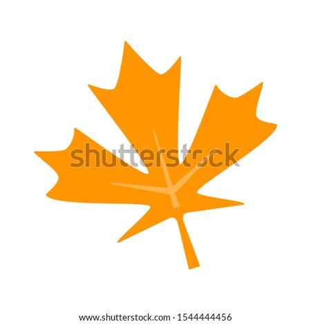 maple icon - Autumn colorful canada maple leaf