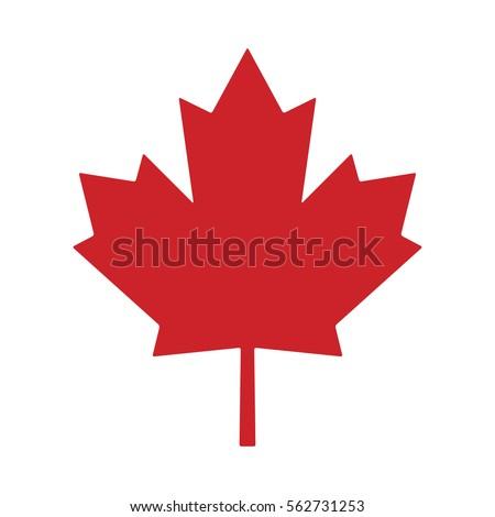 maple leaf canada vector symbol