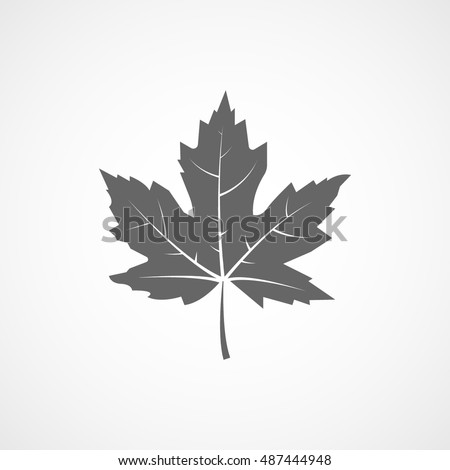 maple leaf flat icon on white