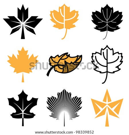 maple leaf icons vector set