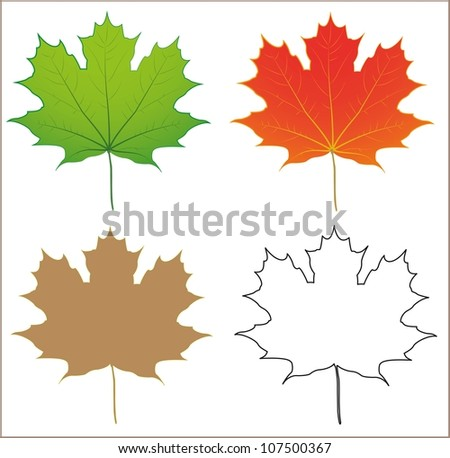 maple leaf object in green
