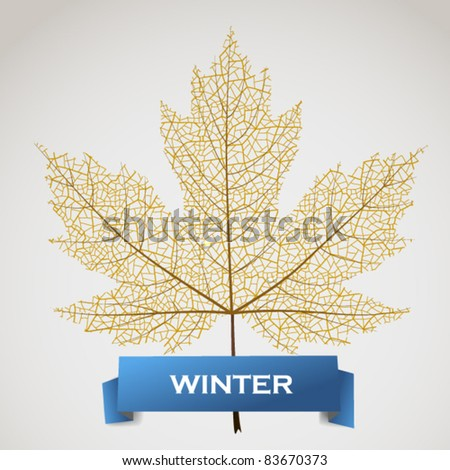 Maple leave with winter banner - stock vector