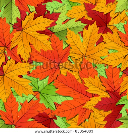 Maple leaves of different colors seamless background