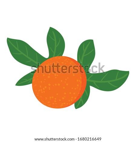 Maracuja fruit icon. Isometric of maracuja fruit vector icon for web design isolated on white background