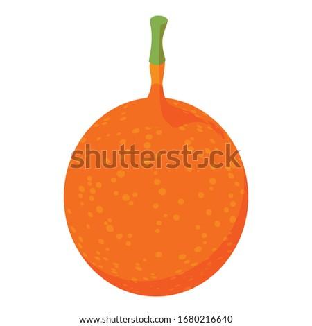 Maracuja passion fruit icon. Isometric of maracuja passion fruit vector icon for web design isolated on white background