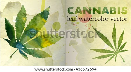 marijuana leaf on the old