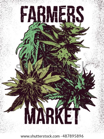 marijuana weed ganja vector