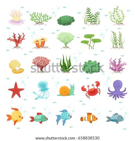 Marine animals, fishes collection and underwater plants. Aqua wild fauna. Vector illustration