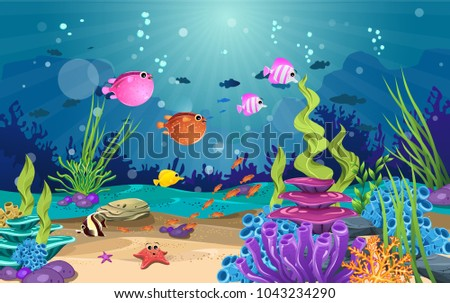 marine habitats and the beauty