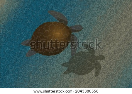 marine life  a turtle in its