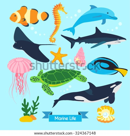 marine life vector design
