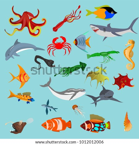 marine life vector illustration