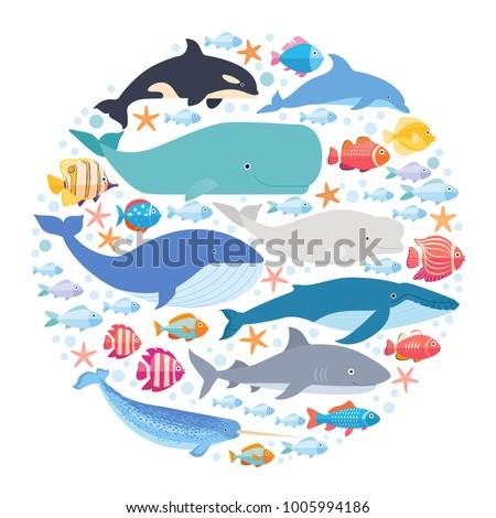 marine mammals and fishes set...
