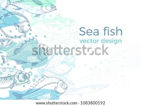 Marine vector background of nature sea fish. Doodle art line design Color sketch illustration Perch, cod, mackerel, flounder, saira Fresh food Modern template for print, textile, banner, menu, packing