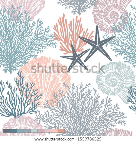 Marine vector hand drawn pattern with sea shells, stars, mollusk and coral. Perfect for textiles, wallpaper and prints. Imagine de stoc ©